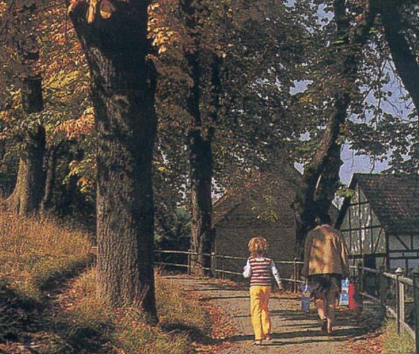 Herbst in Herzberg am Harz